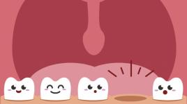 Vos dents : types, rôles et tout ce que vos enfants doivent savoir