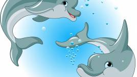Dauphins: les animaux extraordinaires que nous aimons tous