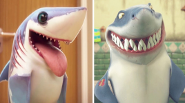 Faits amusants sur les requins