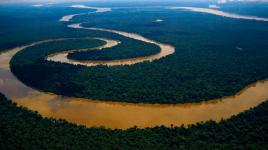 Pourquoi nous devrions en savoir plus sur le fleuve Amazone