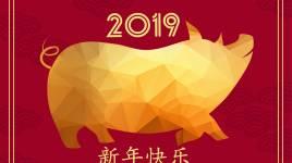 La Chine accueille l'année du cochon!