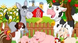 Raisons pour lesquelles les animaux sont bons pour les enfants