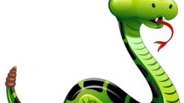 Le jour du serpent est aujourd'hui : apprenons-en plus sur les serpents
