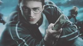 Harry Potter, l'histoire du jeune sorcier
