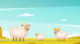 La comptine La ronde des moutons