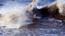 Avez-vous entendu parler du tsunami?