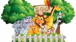 Pourquoi les zoos sont-ils les meilleurs moyens pour nos enfants de découvrir le monde animal?
