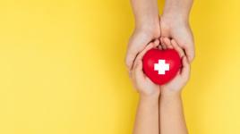 Que devez-vous savoir sur la Croix-Rouge
