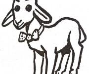 Coloriage dessin  Agneau 15