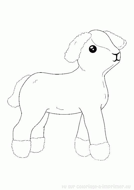 Coloriage agneau en noir et blanc dessin gratuit imprimer - Coloriage agneau ...