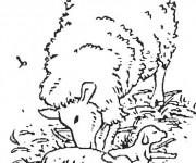 Coloriage et dessins gratuit Agneau et sa mère à imprimer