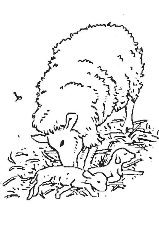 Coloriage et dessins gratuits Agneau et sa mère à imprimer
