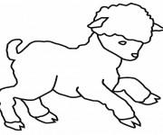Coloriage et dessins gratuit Un petit agneau à imprimer