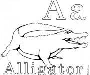 Coloriage dessin  Alligator 11