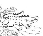 Coloriage dessin  Alligator 2