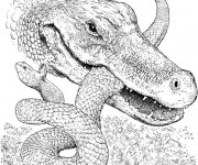 Coloriage Alligator et serpent en combat