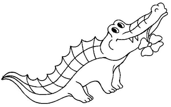 Coloriage et dessins gratuits Alligator porte une fleur à imprimer