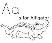 Coloriage et dessins gratuit Alligator pour enfant à imprimer