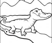 Coloriage Alligator se prépare pour manger