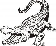 Coloriage Crocodile ouvrant sa bouche