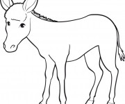 Coloriage et dessins gratuit Âne dessin à imprimer