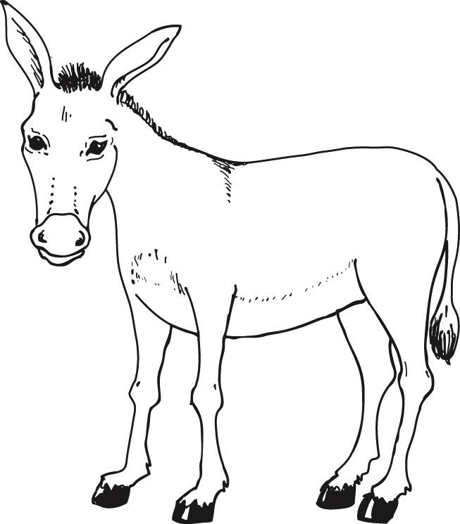 Coloriage âne Pour Enfants Dessin Gratuit à Imprimer