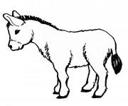 Coloriage et dessins gratuit Dessin d'un petit  âne à imprimer