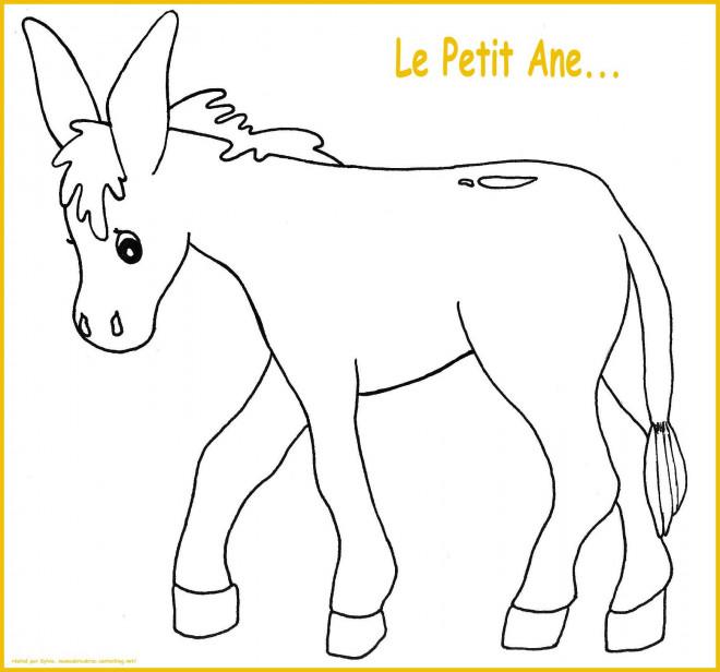 Coloriage et dessins gratuits Le petit âne à imprimer