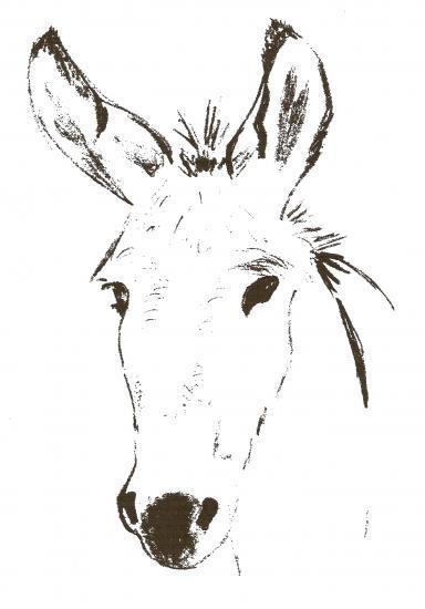 Coloriage et dessins gratuits tête d'âne à imprimer