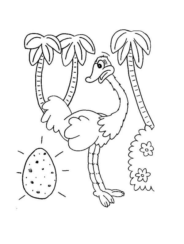 Coloriage et dessins gratuits Autruche et Oeuf à imprimer