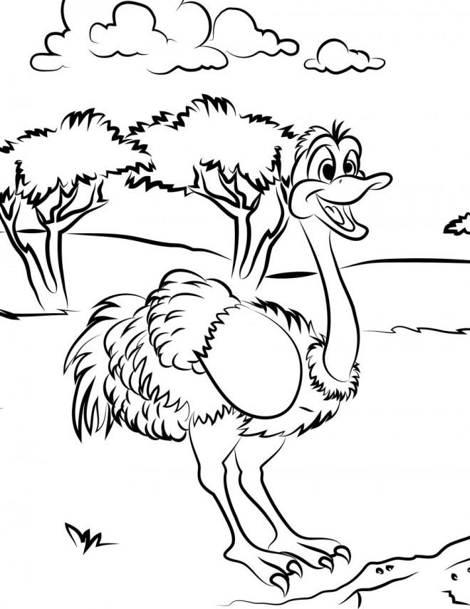 Coloriage et dessins gratuits Autruche s'amuse dans la nature à imprimer