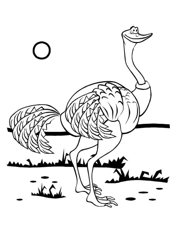 Coloriage et dessins gratuits Autruche sous le soleil à imprimer