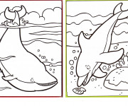 Coloriage Baleine et Dauphin