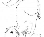 Coloriage dessin  Belette 2