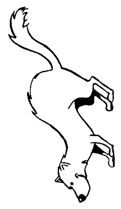 Coloriage et dessins gratuits Belette en noir et blanc à imprimer