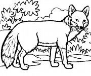 Coloriage dessin  Beluga 7