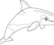 Coloriage Beluga couleur