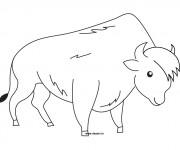 Coloriage dessin  Bison 1