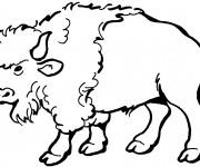 Coloriage dessin  Bison 13