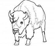 Coloriage dessin  Bison 2