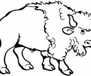 Coloriage dessin  Bison 5