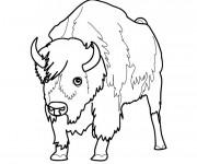 Coloriage et dessins gratuit Bison d'Amérique facile à imprimer