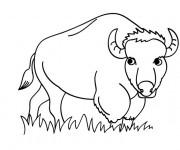 Coloriage et dessins gratuit Bison dans le champ à imprimer