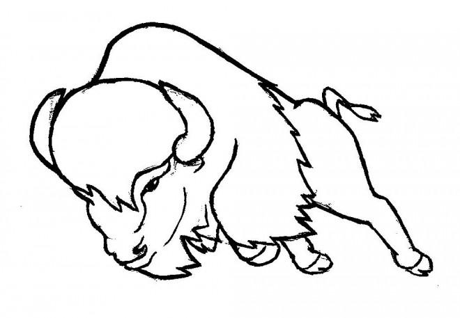 Coloriage et dessins gratuits Bison en attaque à imprimer