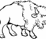 Coloriage et dessins gratuit Bison en couleur à imprimer
