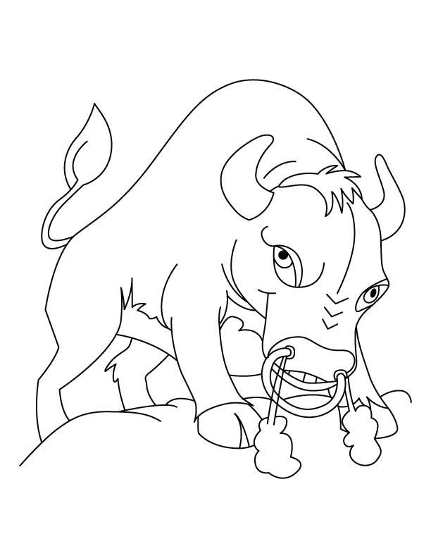 Coloriage et dessins gratuits Bison énervé à imprimer