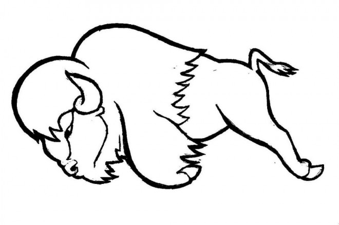 Coloriage bison tout en sautant dessin gratuit imprimer - Coloriage bison ...