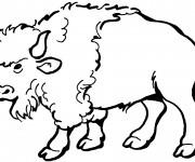 Coloriage et dessins gratuit Gros Bison à imprimer