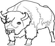 Coloriage et dessins gratuit Le regard de Bison à imprimer