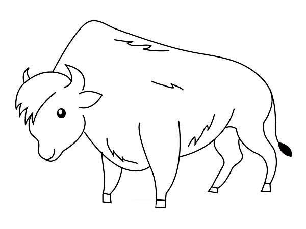Coloriage un beau bison dessin gratuit imprimer - Photo de bison a imprimer ...